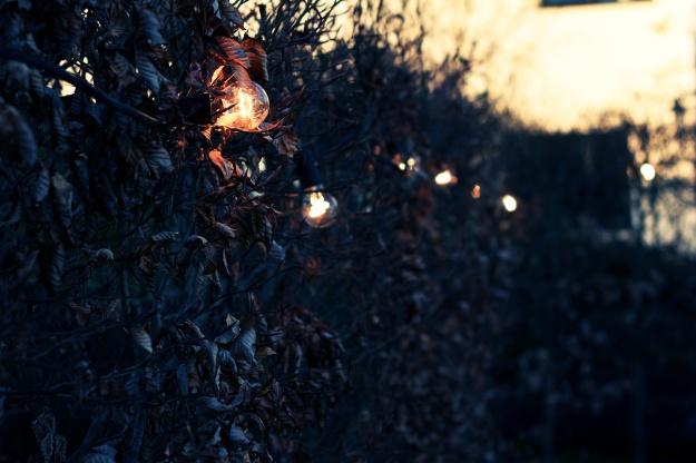 Lighting (1)