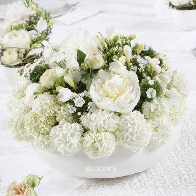pure white selection against blush of greenery